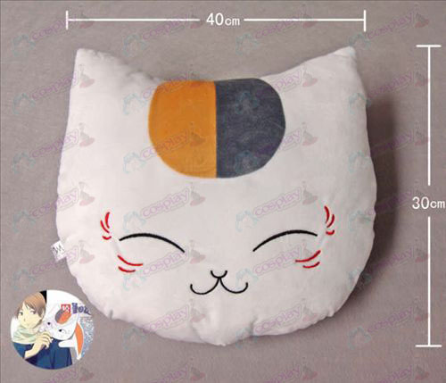 Cat leraar Pillow