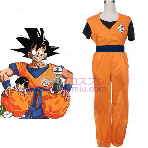 Prachtige Dragon Ball Cosplay Kostuum