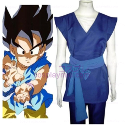 Dragon Ball Son Gohan Cosplay Kostuum